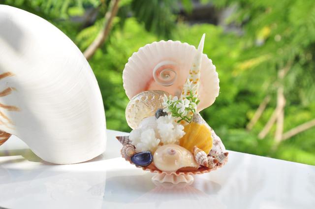 quà lưu niệm vỏ sò ốc