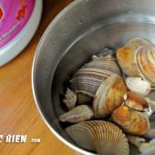 Xử lý vỏ ốc biển sạch bóng bằng chất tẩy