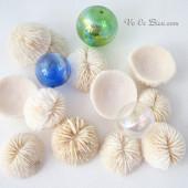 San hô Little Mushroom Coral