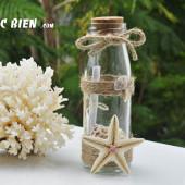 Lọ thủy tinh cát vỏ ốc 15×5 MB155_05 (message bottle)