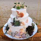 Chọn bánh cưới độc đáo kết hợp vỏ ốc & sao biển, đám cưới biển Phương Vy Idol