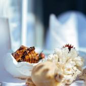 Chuyên gia tư vấn: Chuẩn bị đám cưới ở biển Hồ Tràm P.1