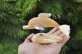 Chú cá heo làm từ trai vàng & vỏ ốc QLN_08