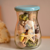 Hũ thủy tinh quà tặng vỏ sò ốc đủ loại MixShell_03