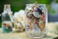 Hũ thủy tinh quà tặng vỏ sò ốc đủ loại MixShell_01