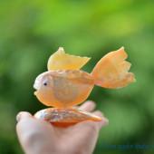 Cá vàng làm từ vỏ sò ốc QLN_16