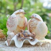 Cặp chim vỏ sò dương QLN_20