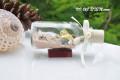Lọ thủy tinh cát & vỏ ốc đế gỗ (10×5) LCDG105_09