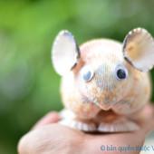Chuột hamster vỏ sò ốc QLN17