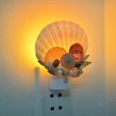 Đèn ngủ cắm tường vỏ sò điệp DN53