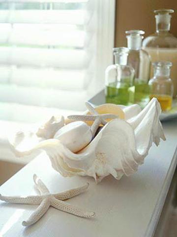 Dùng vỏ sò làm đĩa đựng đồ