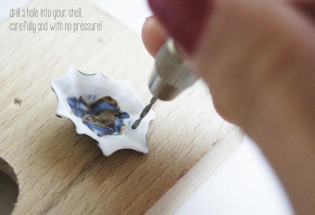 khoan một lổ nhỏ lên trên vỏ ốc đs của bạn