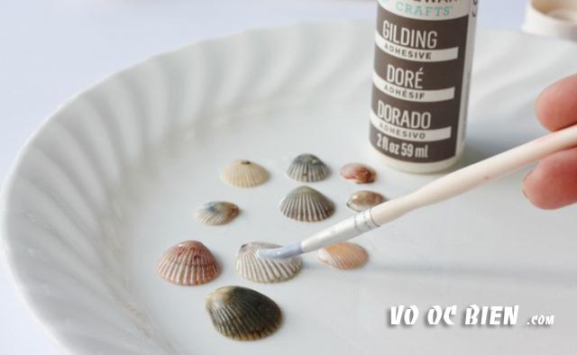 quét sơn bóng lên vỏ sò