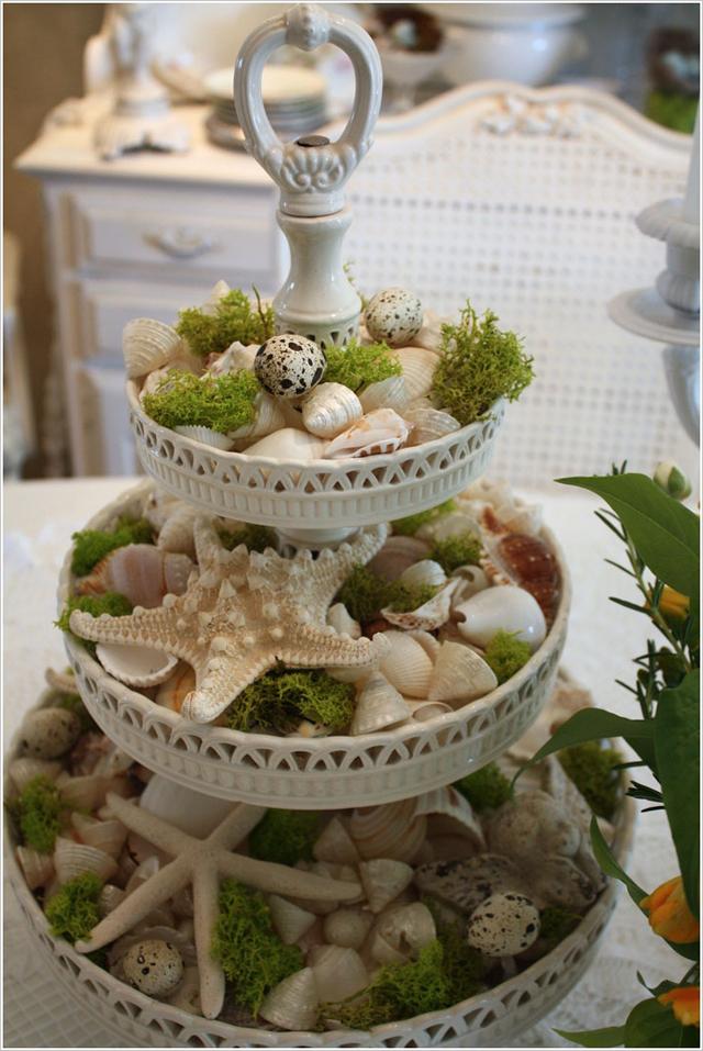 Làm đẹp nhà sử dụng vỏ ốc, vỏ sò, sao biển ...