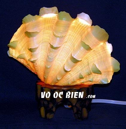 một phong cách khá độc đáo từ vỏ ốc biển