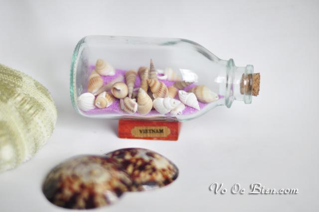 Lọ thủy tinh cát & vỏ ốc LC01