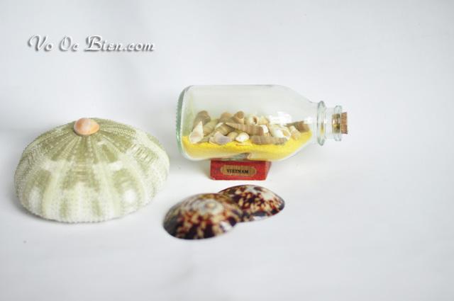 Lọ thủy tinh cát & vỏ ốc LC02