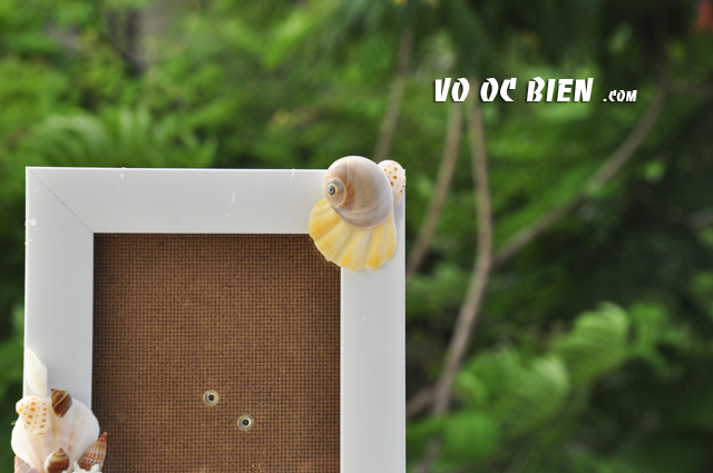 Khung ảnh vỏ sò vỏ ốc (10x15) KA17
