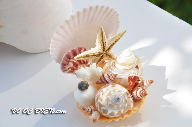 Ghế tựa vỏ ốc biển GTOB_03