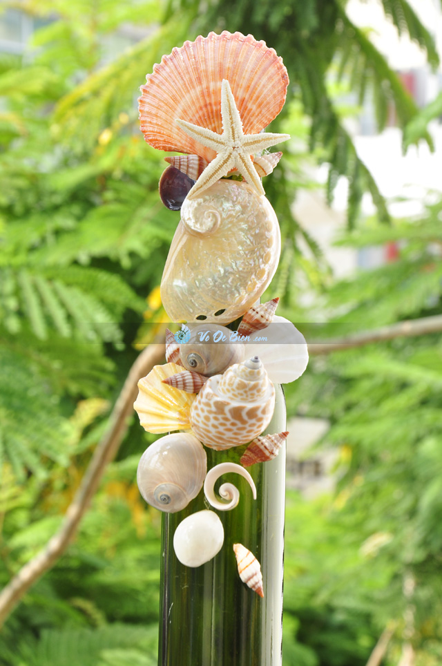 Lọ thủy tinh màu đính vỏ ốc (40×5) LOM405_06