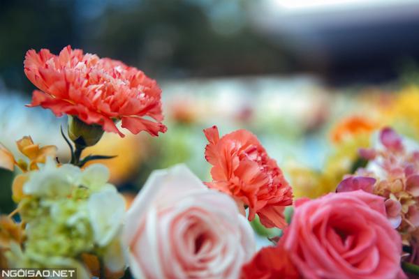 Hoa với sắc màu tươi sáng, nổi bật giữa không gian xanh của biển và hồ bơi.