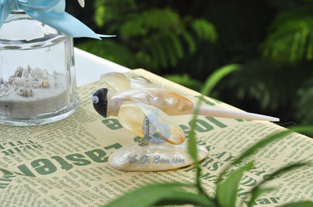 Chuồn chuồn trai vàng QLN_05 - hình chụp tại VoOcBien
