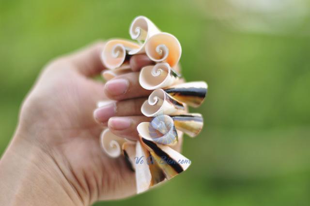 Lắc đeo tay vỏ ốc LDT03 (hình chụp tại VoOcBien)