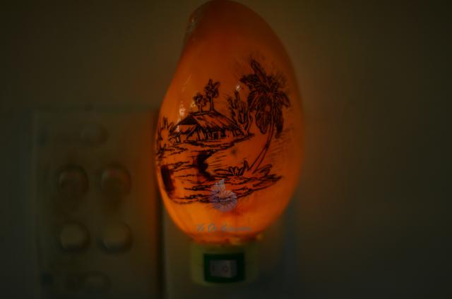 Đèn ngủ vỏ ốc gáo khắc ĐN10 - hình chụp tại VoOcBien