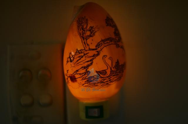 Đèn ngủ vỏ ốc gáo khắc ĐN12 - hình chụp tại VoOcBien