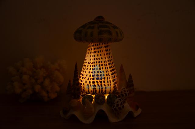 Đèn ngủ vỏ ốc cối & 1 nhum biển ĐN17 - hình chụp tại VoOcBien