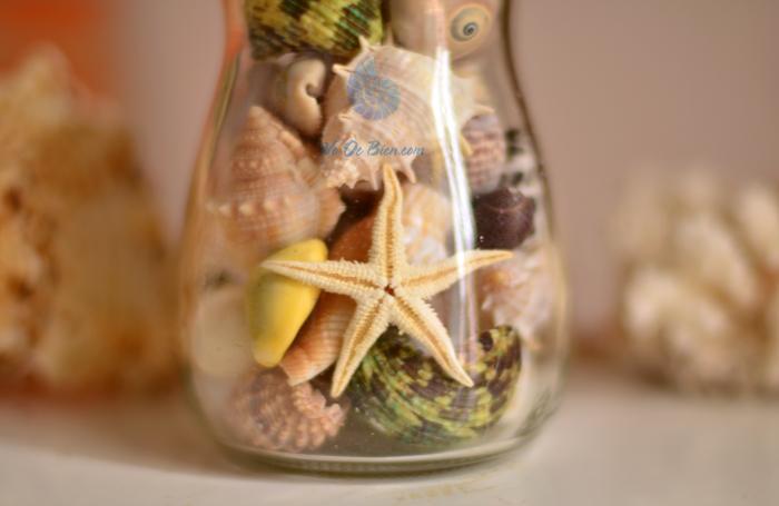 Hũ thủy tinh quà tặng vỏ sò ốc đủ loại MixShell_03 - hình chụp tại VoOcBien