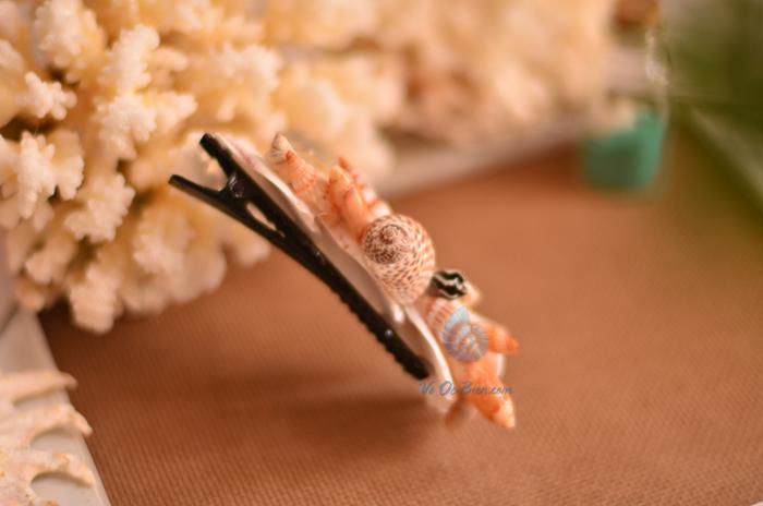 Kẹp cài tóc vỏ sò vỏ ốc KCT10 - hình chụp tại VoOcBien