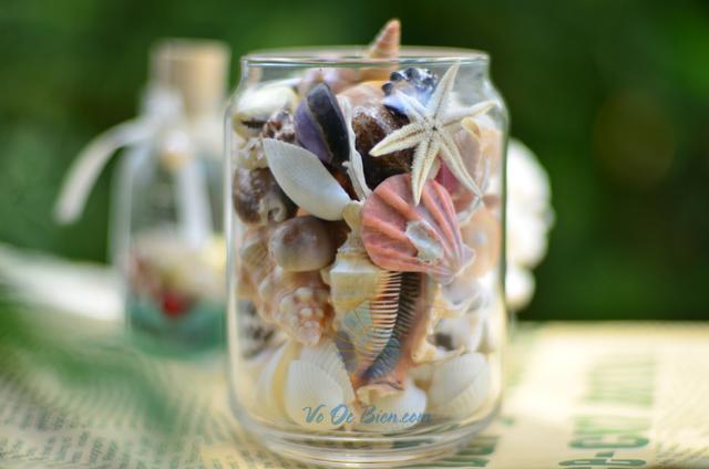 Lọ thủy tinh quà tặng vỏ sò ốc đủ loại MixShell_01 - hình chụp tại VoOcBien