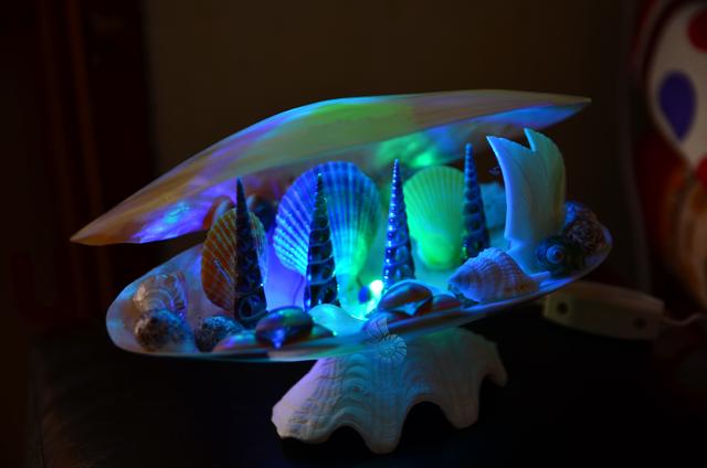 Đèn ngủ vỏ ốc & vỏ trai mài ĐN23 - hình chụp tại VoOcBien