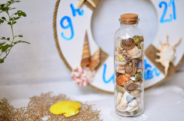 Hũ thủy tinh quà tặng vỏ sò ốc đủ loại MixShell_05