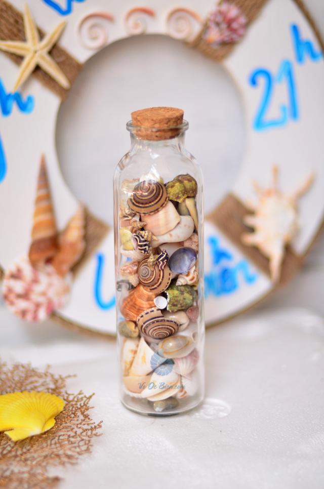 Hũ thủy tinh quà tặng vỏ sò ốc đủ loại MixShell_05 - hình chụp tại VoOcBien