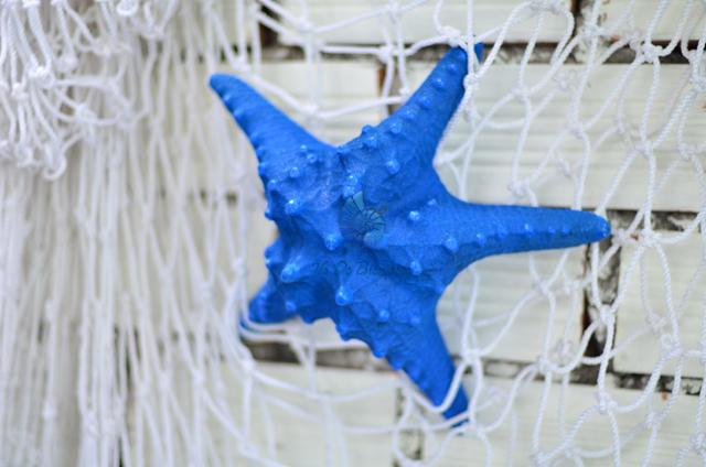 Sao biển gai lớn xanh biển