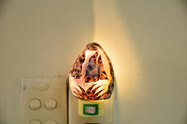 Đèn ngủ vỏ ốc gấm mài khắc ĐN25 – © bản quyền hình chụp tại VoOcBien