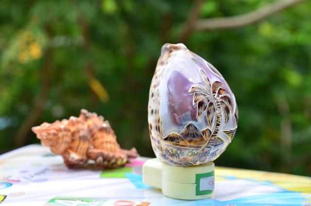 Đèn ngủ vỏ ốc gấm mài khắc ĐN26 – © bản quyền hình chụp tại VoOcBien