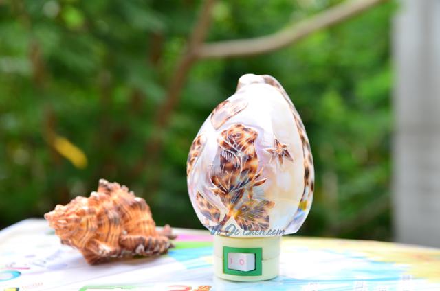 Đèn ngủ vỏ ốc gấm mài khắc ĐN27 – © bản quyền hình chụp tại VoOcBien