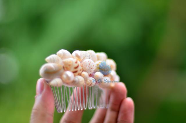 Lược cài tóc vỏ sò vỏ ốc LCT08 - © bản quyền hình ảnh thuộc VoOcBien