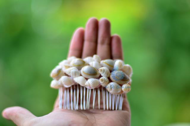 Lược cài tóc vỏ sò vỏ ốc LCT09 – © bản quyền hình ảnh thuộc VoOcBien