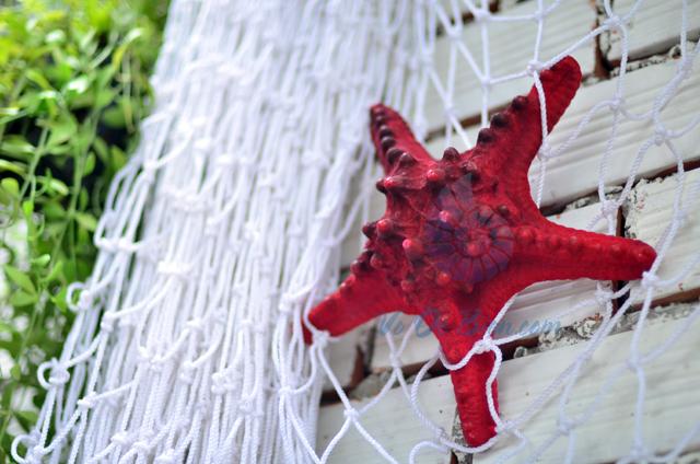 Sao biển gai lớn màu đỏ