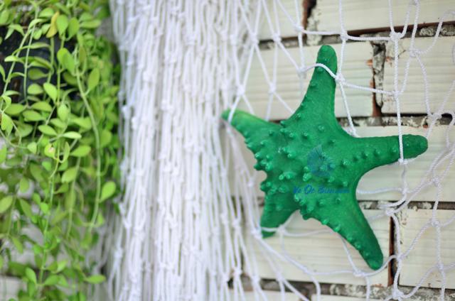 Sao biển gai lớn màu xanh lá - © bản quyền hình chụp tại VoOcBien