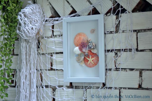 Tranh vỏ ốc nhiều loại (size 35x26) TO04 - © bản quyền hình ảnh thuộc VoOcBien.com