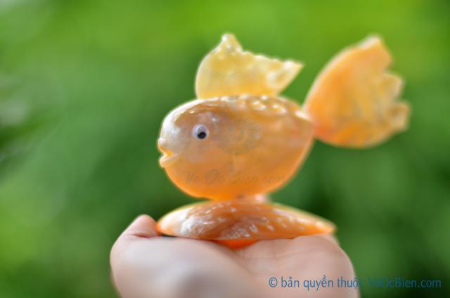 Cá vàng làm từ vỏ sò ốc QLN_16 - © bản quyền hình ảnh thuộc VoOcBien.com