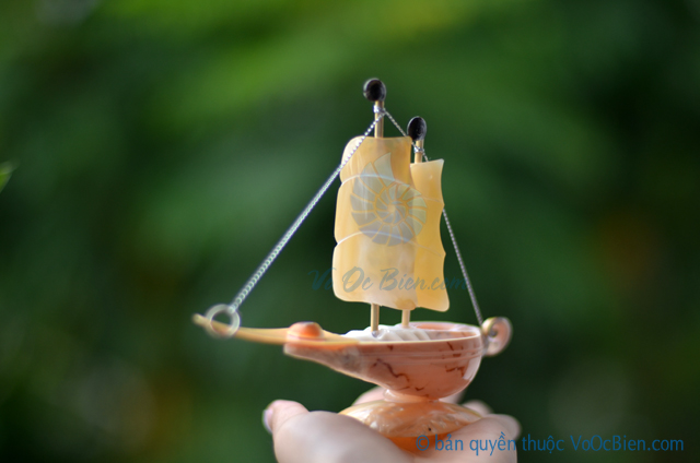 Thuyền buồm vỏ ốc nhỏ TB21 - © bản quyền hình ảnh thuộc VoOcBien