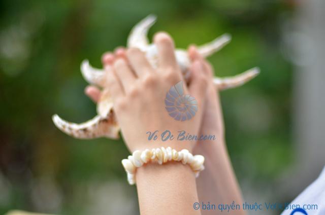 Lắc tay vỏ ốc đụn xà cừ trắng LDT11 - © bản quyền hình ảnh thuộc VoOcBien.com