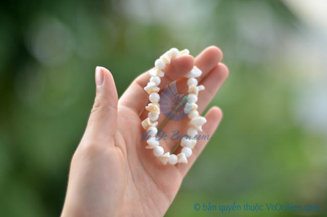 Lắc tay vỏ ốc xà cừ & đụn bi tròn LDT10 - © bản quyền hình ảnh thuộc VoOcBien.com