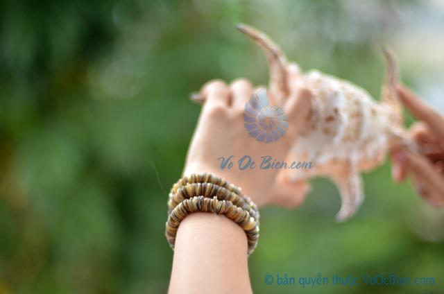 Lắc tay vỏ sò ốc xanh LDT12